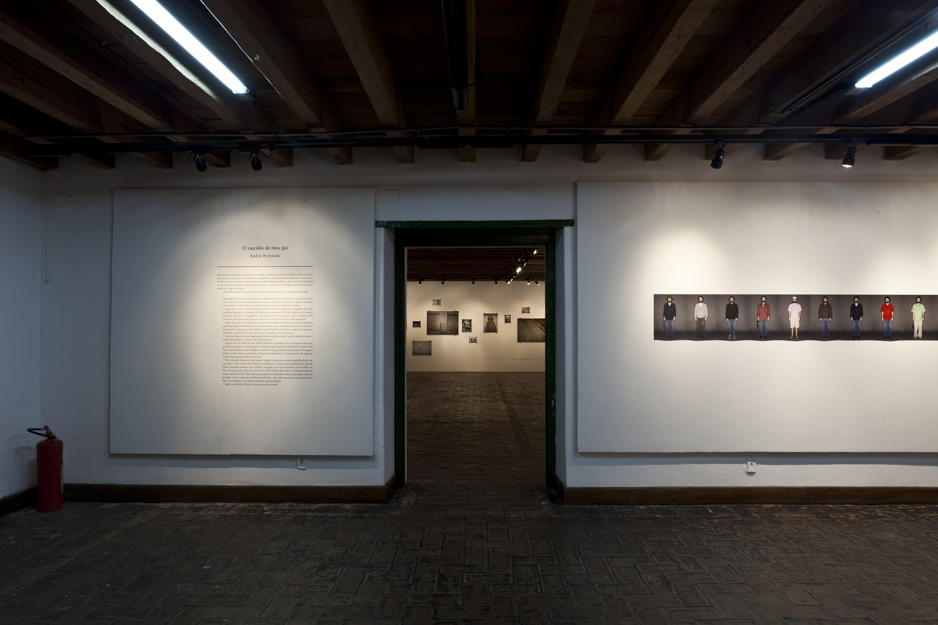 1dads-suicide-2007-2011_installation-view