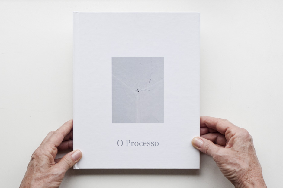 1the-process-2012