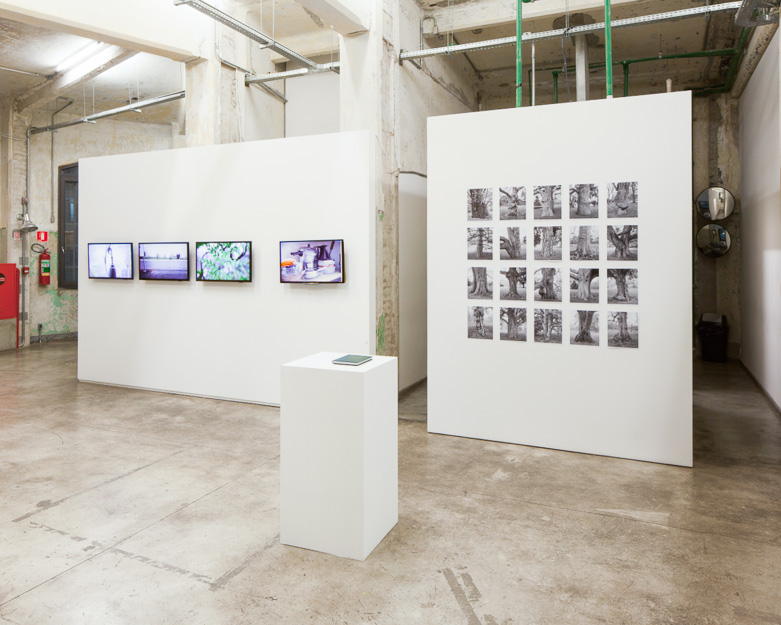 6immigrant-2013-2015_installation-view